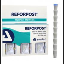 REFORPOST üvegszálas csapkészlet 30 db +3 fúró